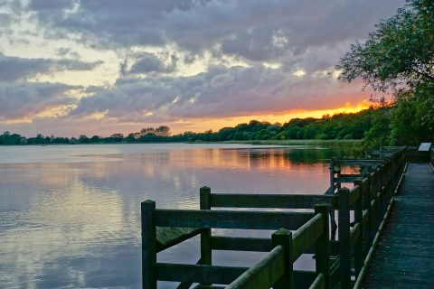 View of the water in the Norfolk Broads
